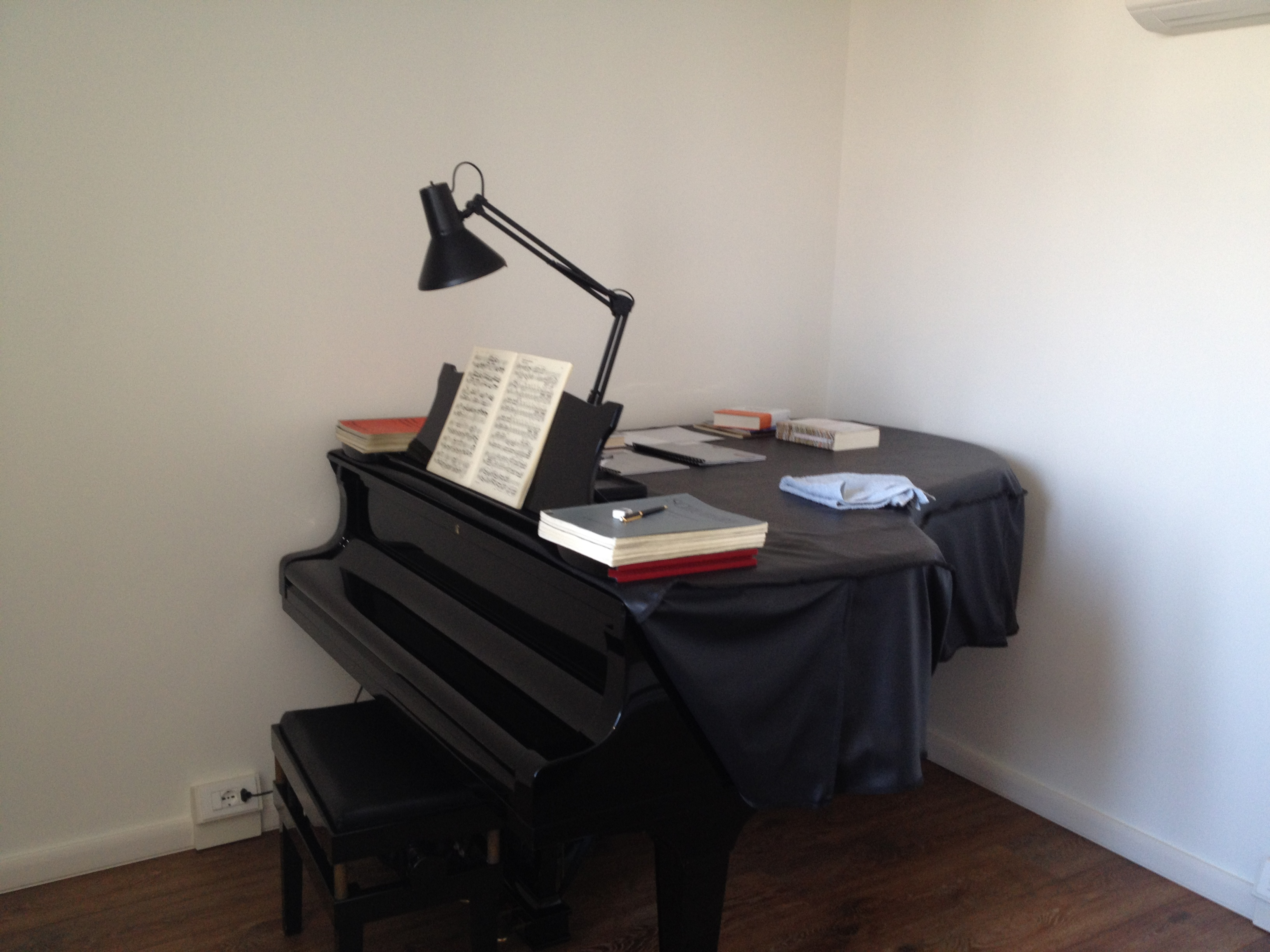 Insonorizzazione Locale Pianoforte Realizzata Per Il Concertista ...